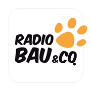 Radio Bau &Co